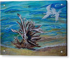 Driftwood On Lake Huron Acrylic Print