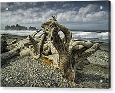 Driftwood On Rialto Beach In Olympic National Park No. 144 Acrylic Print by Randall Nyhof