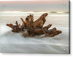 Acrylic Print featuring the photograph Driftwood by Randy Wood