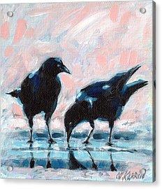 Drinking Crows Acrylic Print by Christine Karron