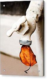 Drip Leaf Acrylic Print by Bobbi Feasel