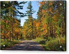 Drive Through Splendor In Minnesota Acrylic Print
