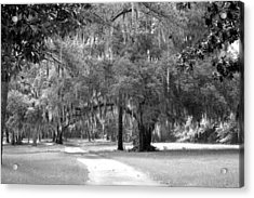 Drive To The Butler Place Acrylic Print