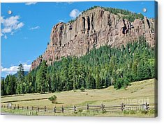 Acrylic Print featuring the photograph Drive To Wolf Creek by William Wyckoff