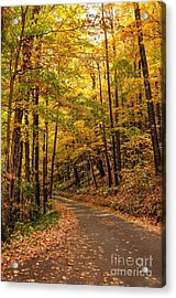 Driving Fall Mountain Roads. Acrylic Print by Debbie Green