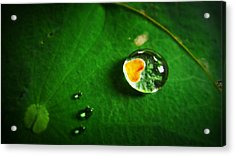 Droplet Of Love Acrylic Print