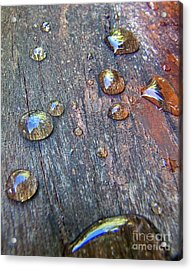 Drops On Wood Acrylic Print by Michelle Meenawong