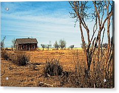 Drought 2 Acrylic Print by Terry Reynoldson