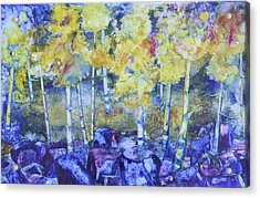Dry Creek Aspens Acrylic Print by Nancy Jolley