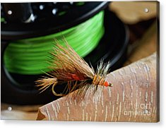Dry Fly - D003399b Acrylic Print by Daniel Dempster