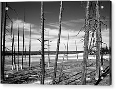 Dry Lake Bed Acrylic Print