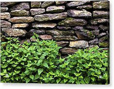 Dry Stone Wall  Acrylic Print