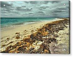 Dry Tortugas Beach Acrylic Print by Adam Jewell