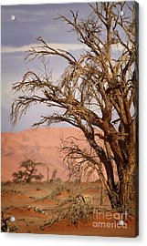 Dry Tree In The Desert Acrylic Print