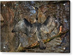 Drying Time Acrylic Print by Marty Koch