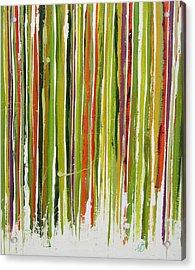 D.s. Color Band Skinny Acrylic Print by Kathy Sheeran