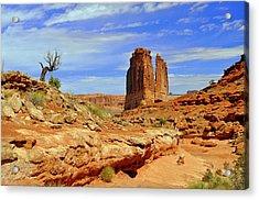 Dsc_3690.jpg Acrylic Print by Marty Koch