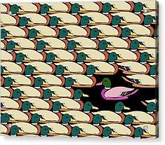Duck Against The Flow Acrylic Print