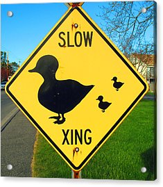 Duck Crossing Sign Acrylic Print by Barbara McDevitt