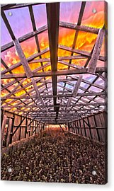 Duck Farm Skeleton Skylight Acrylic Print