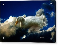 Duck In The Clouds - F Acrylic Print