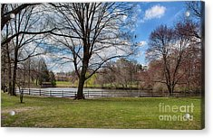 Duck Pond Haverford College Acrylic Print by Kay Pickens