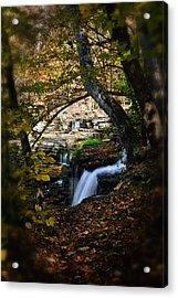 Duck River Falls Acrylic Print
