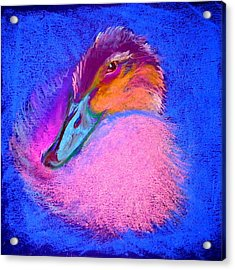 Duckling Pretty In Pink Acrylic Print