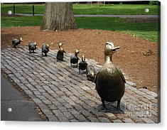 Ducklings Acrylic Print by Christiane Schulze Art And Photography