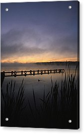 Ducks Dock And Reeds Acrylic Print