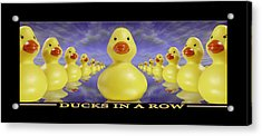 Ducks In A Row Acrylic Print by Mike McGlothlen