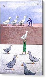 Ducks In A Row Acrylic Print by Steve Dininno