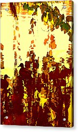 Ducks On Red Lake 2 Acrylic Print by Amy Vangsgard