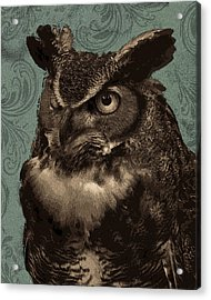 Dudley Acrylic Print by Rose  Fleming