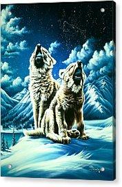 Duet Acrylic Print by Lori Salisbury
