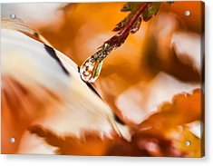 Dulce De Recuerdo Acrylic Print by Kenneth Haley