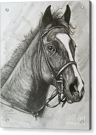 Acrylic Print featuring the drawing Dullahan by Patrice Torrillo
