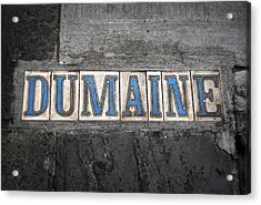 Dumaine Acrylic Print by Beth Vincent