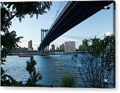 Acrylic Print featuring the photograph Dumbo One by Jose Oquendo
