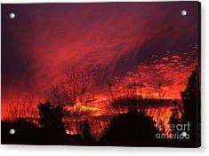 Dundee Sunset Acrylic Print