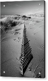 Dune # 5 Acrylic Print