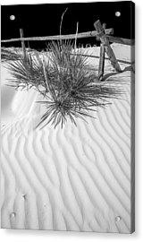 Dune And Black Sky Acrylic Print by Arkady Kunysz