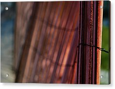 Dune Fence Acrylic Print by Laura Fasulo