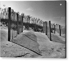 Dune Fences Acrylic Print