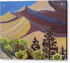 Dune Field Acrylic Print by Susan McCullough
