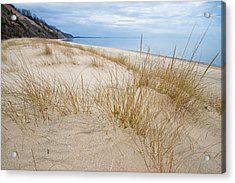 Dune Grass On Lake Michigan Acrylic Print