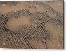 Dune Acrylic Print by Joseph Yarbrough