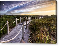 Dune Walk Acrylic Print by Debra and Dave Vanderlaan