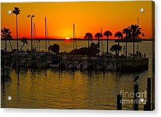 Acrylic Print featuring the photograph Dunedin Sunset by Alice Mainville