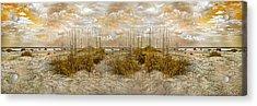 Dunes Acrylic Print by Betsy Knapp